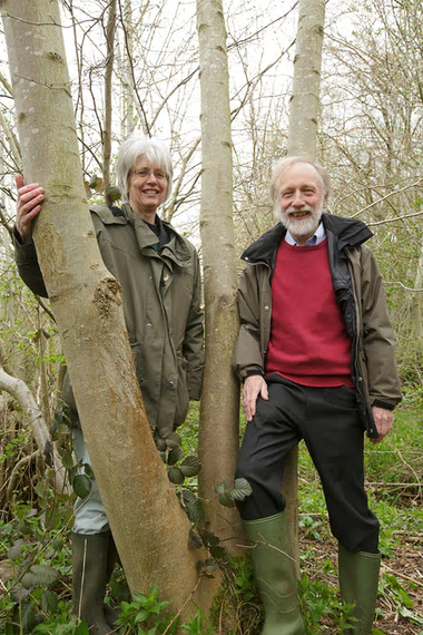 Ash dieback couple
