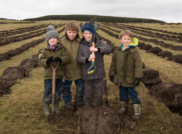Doddington - kids planting