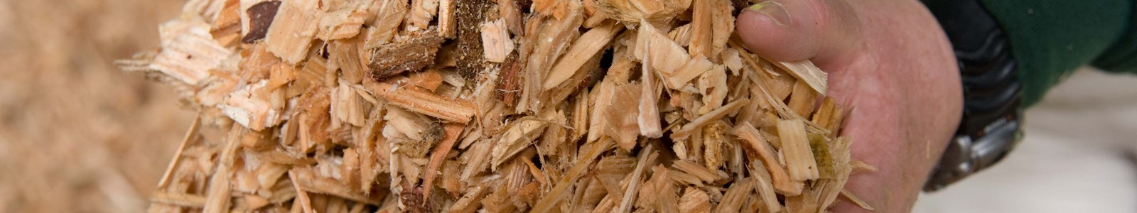 woodchip Forestry Comission